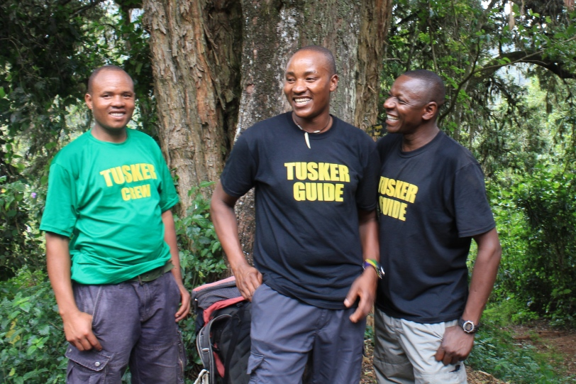Our Tusker Companions