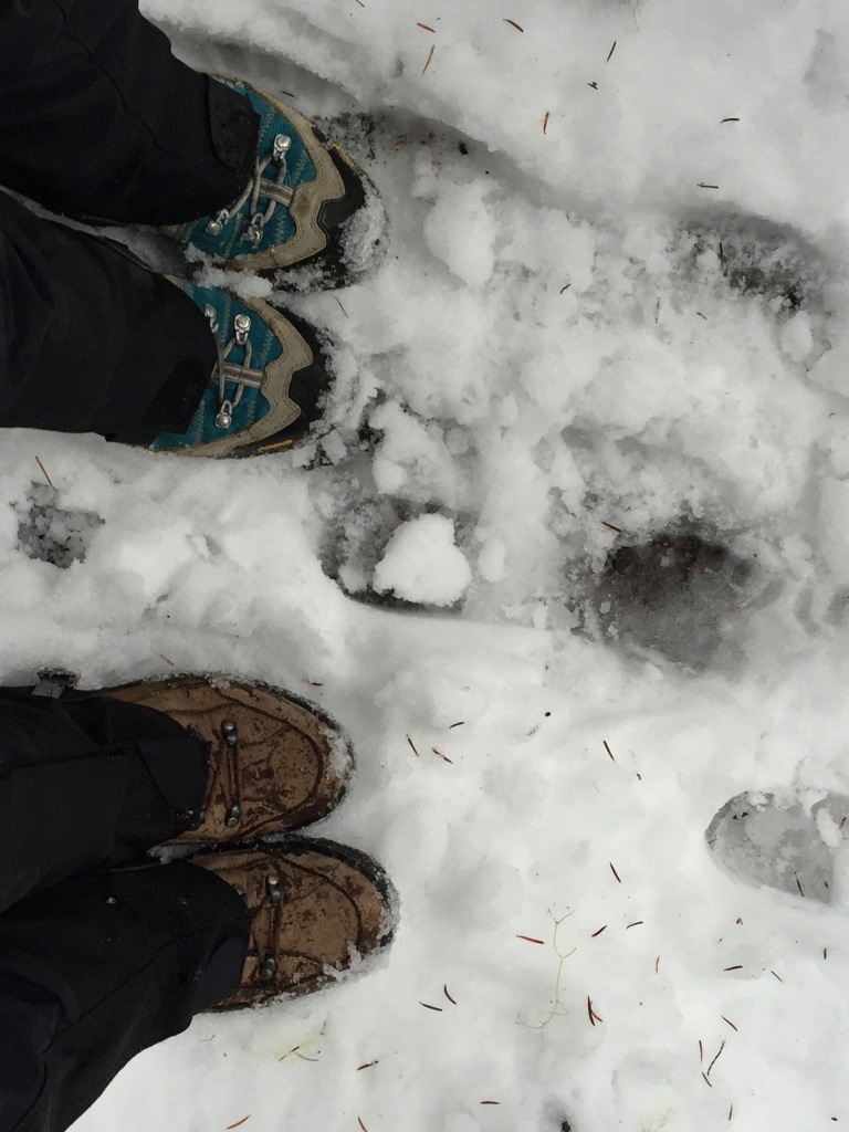 We did not realize we would need snow shoes