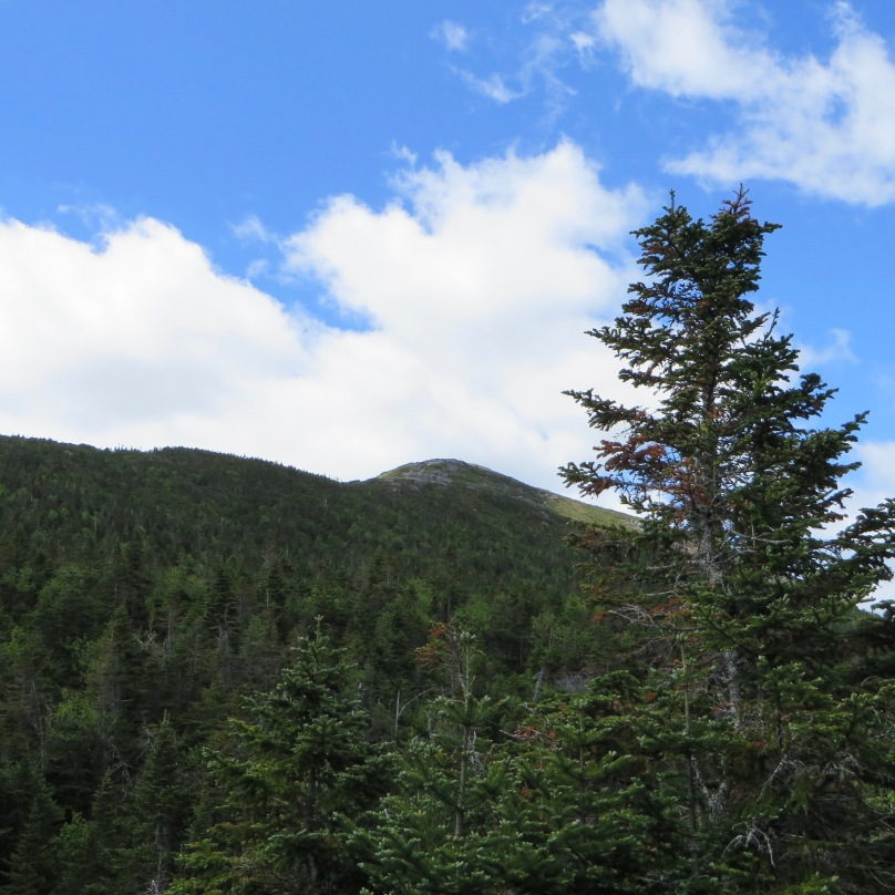Mount Marcy in the distance