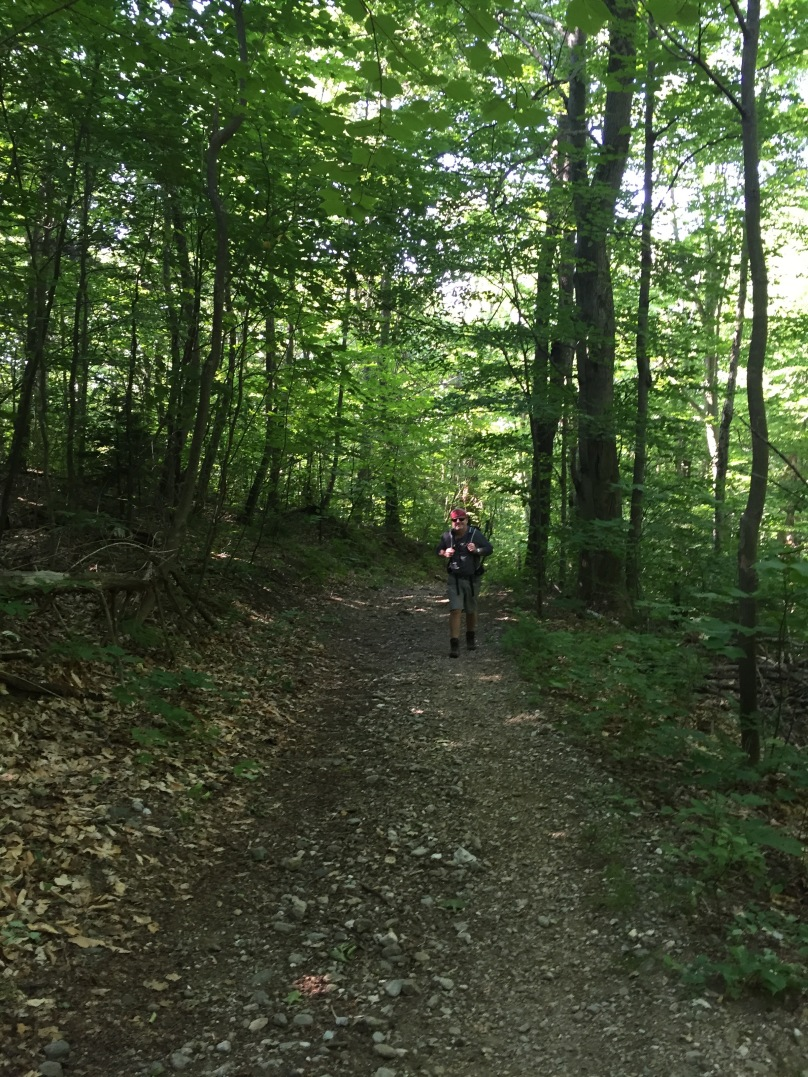 Bellows Pipe Trail